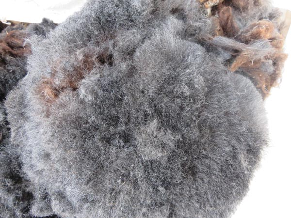 HERDWICK FLEECE